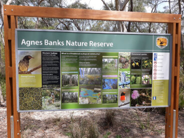 Agnes Banks Nature Reserve